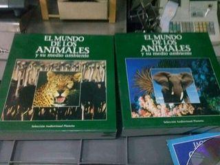 Dvds gigantes de fauna...