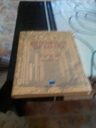 Libro de catedrales de españa