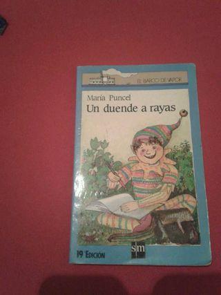 Libro Lectura Un duende a Rayas