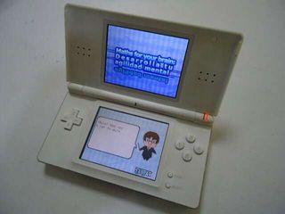 Consola DS Lite Nintendo