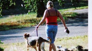 Paseo y Cuido Perros en zona de Rubi
