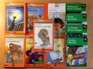 Lote 12 Libros A Partir De 9 Años
