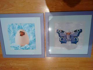 Cuadros fotos Anne Geddes 35x35