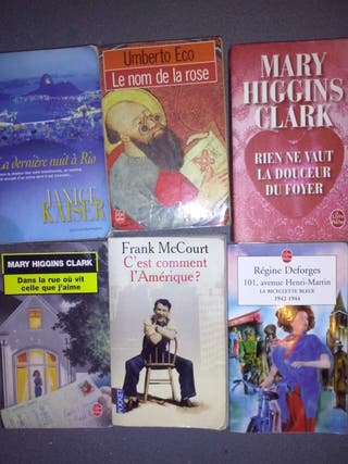 Lote 18 libros en francés