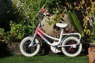 Bicicleta aprndizaje