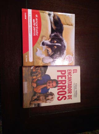 El encantador de perros+educación básica 1. Dvd