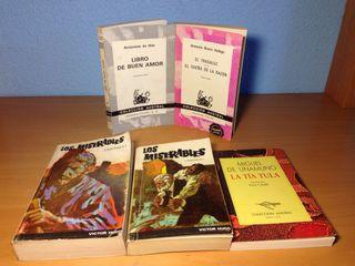 Lote Grandes Clásicos de la Literatura Española