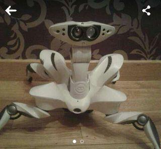 Robot roboquad