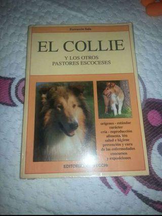 Libro El coli