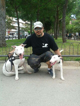 Adiestramiento y paseo canino económico