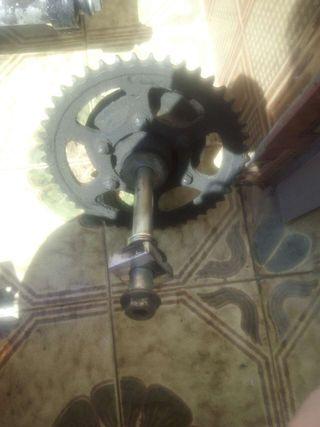 Piñón de traccion rueda trasera