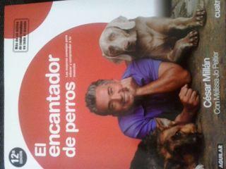 Cesar millan el encantador de perros