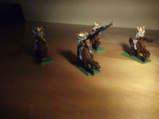 Warhammer. Caballeros gélidos. Elfos oscuros.