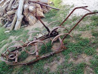 Escampadeira Antigua