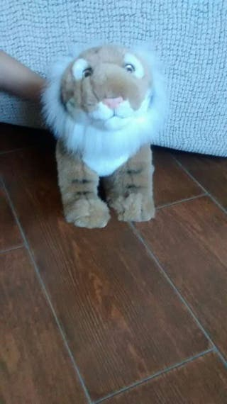 Tigre muy chuli