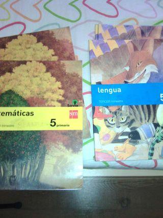 Libros de quinto. S.M