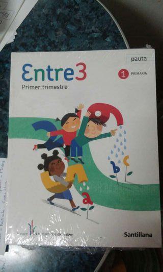 Libros 1 primaria santillana