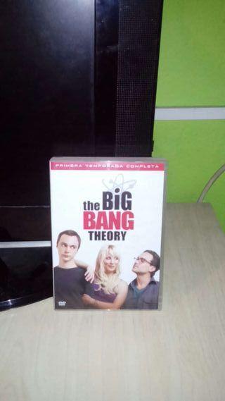 The big bang theory, primera temporada
