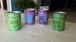 latas para hacer crecer plantitas. para decirle a una persona especial que le quieres o para augurar suerte!