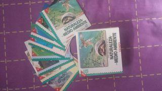 3 colecciones inneditas EL TIEMPO.