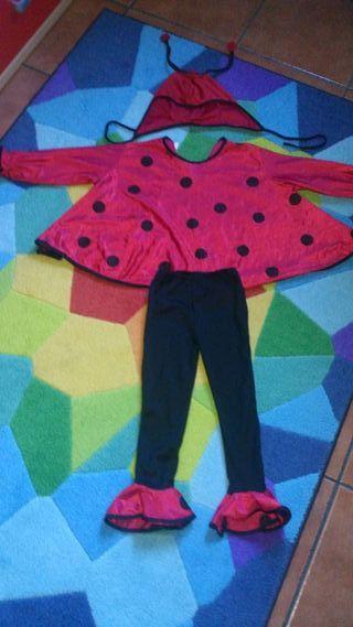 Disfraz mariquita