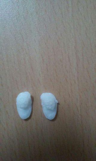 Hueso de corvina para uso en joyeria