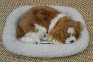 Peluche perro dormilón