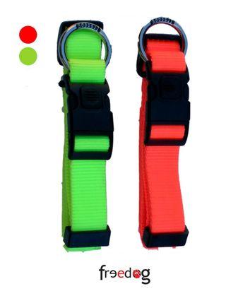 Collar Fluorescente Colours Freedog