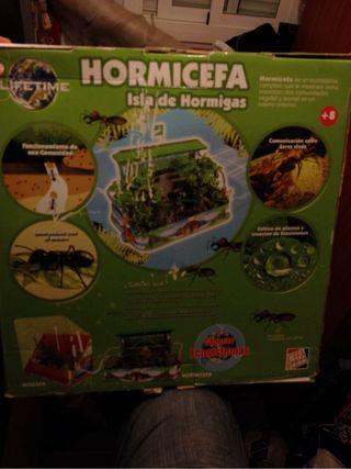 Hormicefa