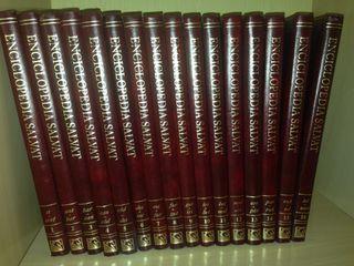 Diccionario Enciclopedia Salvat