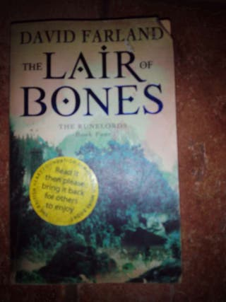 fantasy novel libro ingles