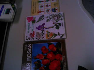3 libros sobre plantas y flores