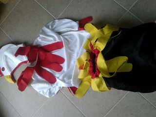 Disfraz gallo-gallina