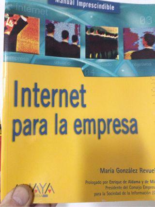 Manual Imprescindible. Internet para la empresa