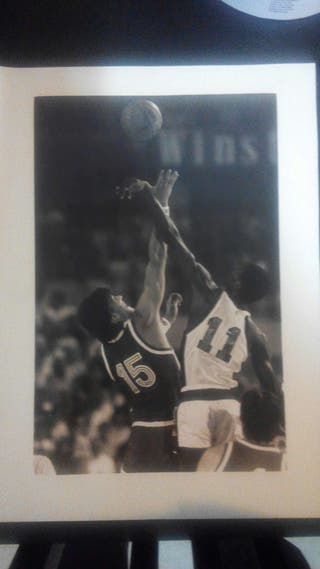 Lamina basket David Robinson