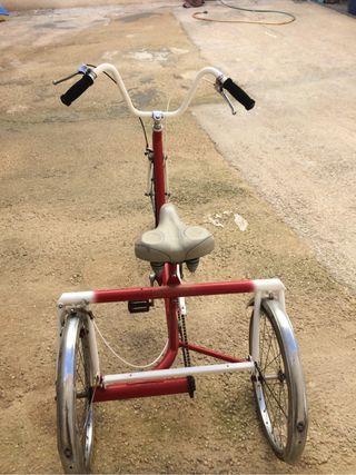 Triciclo Bh