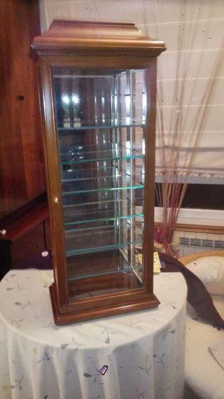 Vitrina especial exposición colecciones