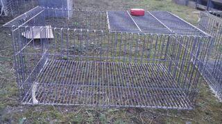 Jaulas de conejos
