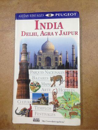 Guia India: Delhi, Agra y Jaipur