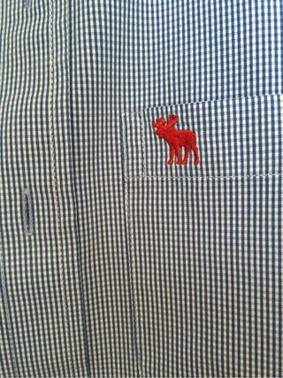 Camisas Chico Abercrombie, CH,