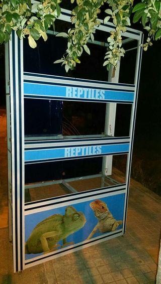 Bateria peces y reptiles