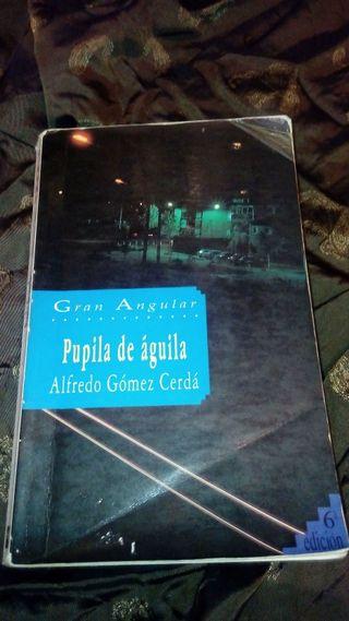 Pupila de águila (Alfredo Gómez Cerdá)