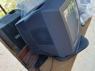 Tv 19 con mando y sin tdt