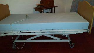 Cama ortopédica eléctrica