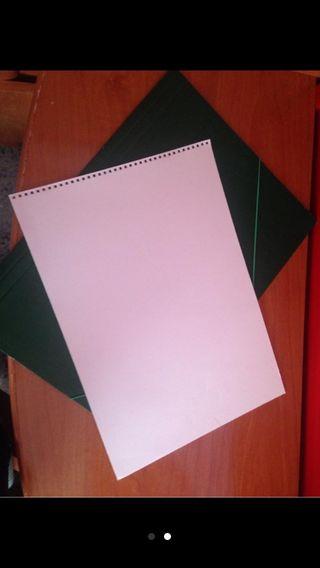 Carpeta + hojas de dibujo