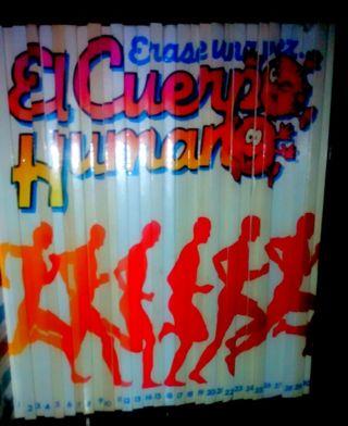 Colección El cuerpo humano