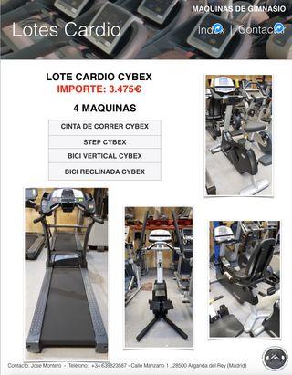 LOTE CARDIO CYBEX, CINTA DE CORRER, STEP