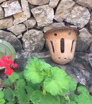 Aplique lámpara terracota envejecida