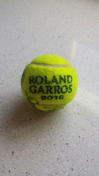 Pelota tenis autógrafo David Ferrer