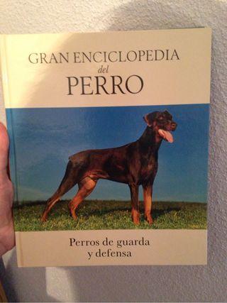 Gran Enciclopedia Del Perro